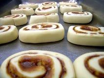 Cinnamon Rolls. Pinwheels rising in a pan Stock Photos