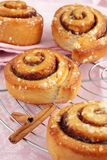 Cinnamon rolls. Freshly baked cinnamon rolls on a pink background Royalty Free Stock Photography