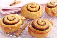 Cinnamon rolls. Freshly baked cinnamon rolls on a pink background royalty free stock photo