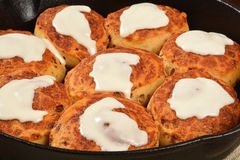 Cinnamon rolls in a cast iron skilled Royalty Free Stock Images