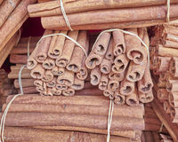 Cinnamon rolls closeup Royalty Free Stock Photos