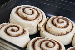 Cinnamon rolls. Dough for rolls. View from above. stock photos
