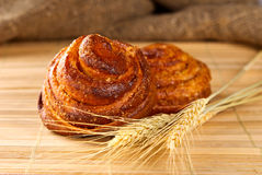 Cinnamon rolls with ear of wheat Royalty Free Stock Image