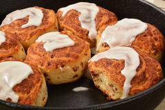 Cinnamon rolls Royalty Free Stock Images