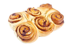 Cinnamon Rolls Isolated on White Royalty Free Stock Photography