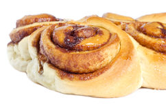 Cinnamon Rolls Isolated on White Royalty Free Stock Photos