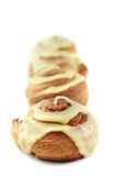 Cinnamon Rolls in a line Stock Photography