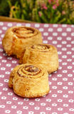 Cinnamon rolls, selective focus Royalty Free Stock Image