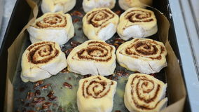 Cinnamon rolls in a tray. Woman adding cinnamon rolls in an oven tray stock video