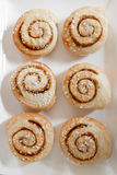 Cinnamon rolls. Royalty Free Stock Photos