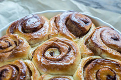 Cinnamon rolls on the wooden background Stock Image