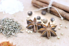 Cinnamon, safron, star anise and peper on a wooden table Stock Image