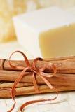 Cinnamon soap stock photo
