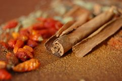 Cinnamon spice Stock Photography