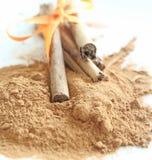 Cinnamon Spice Royalty Free Stock Photos