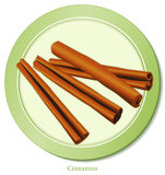cinnamon spice sticks Royaltyfria Foton