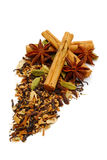 Cinnamon spice tea Stock Image