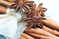 Cinnamon and star anise Royalty Free Stock Images