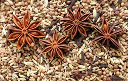 Cinnamon And Star Anise Royalty Free Stock Image