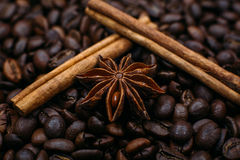 Cinnamon and star anise on coffee beans Stock Images