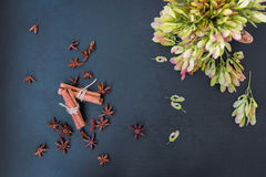 Cinnamon, star anise and maple seeds Royalty Free Stock Photography