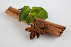 Cinnamon, star anise and mint on white background Stock Image