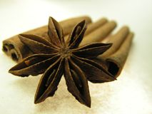 Cinnamon and star anise spice Royalty Free Stock Photography