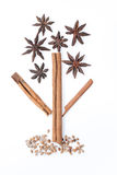 Cinnamon  and star anise in the tree image Stock Images