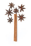 Cinnamon  and star anise in the tree image Royalty Free Stock Photography