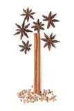Cinnamon  and star anise in the tree image Stock Photography