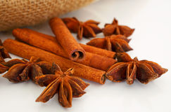 Cinnamon and star aniseed sticks on white. Stock Images