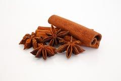 Cinnamon and star aniseed sticks on white. Stock Photos