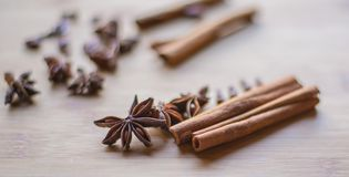 Cinnamon stick and anise on macro photo stock images