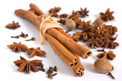 Cinnamon stick, anise, nutmeg and cloves Royalty Free Stock Photos