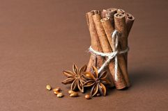 Cinnamon stick and anise stars Royalty Free Stock Photography