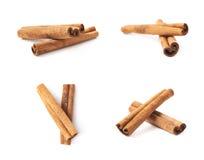 Cinnamon stick isolated Royalty Free Stock Photo