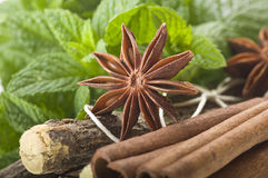 Cinnamon stick Licorice and Star Anise Stock Photo