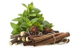 Cinnamon stick Licorice and Star Anise Stock Photos