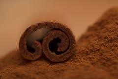 The cinnamon stick Royalty Free Stock Photo