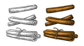Free Cinnamon Stick Set. Single And Bunch Tied By Rope. Stock Images - 125055184