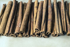 Cinnamon stick Stock Photography