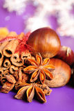 Cinnamon stick, star anise. Cinnamon stick ans chestnuts on purple background Royalty Free Stock Photography