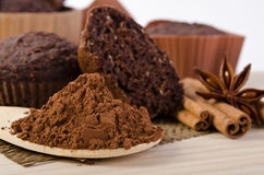 cinnamon stick, star of anise, cocoa powder and chocolate muffin Royalty Free Stock Image