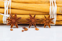 Cinnamon stick and star anise Stock Images