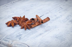 Cinnamon stick and star anise spice Royalty Free Stock Photo