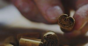 Cinnamon stick stock video