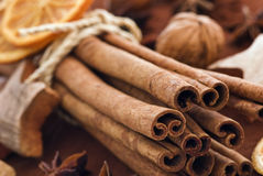 Cinnamon sticks. With nuts and dried orange slices Stock Images