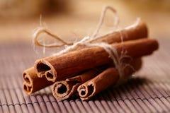 Cinnamon sticks. Bound with string Royalty Free Stock Photos
