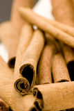 Cinnamon sticks. Studio shot, close up Royalty Free Stock Photo