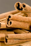 Cinnamon sticks. Studio shot, close up Stock Image